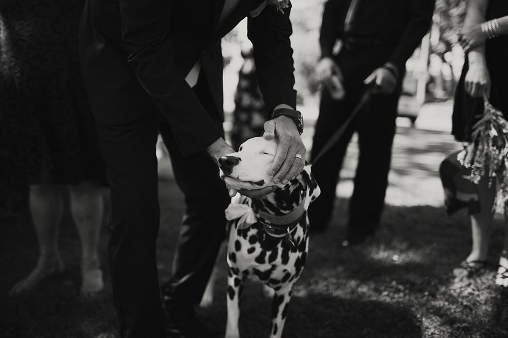 Vancouver Island Elopement Photographer | Victoria Gorge WaVancouver Island Elopement Photographer | Victoria Gorge Waterway Weddingterway Wedding