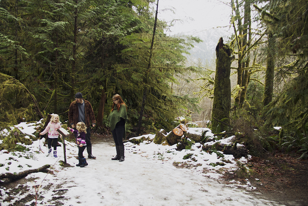 Cathedral Grove Family Photos | Parksville Family Wedding Photographer | Old Growth Forest