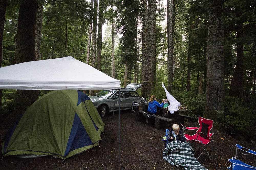 Vancouver Island Road Trip Ideas | North Vancouver Island Adventures | Vancouver Island Camping | Things to do Vancouver Island
